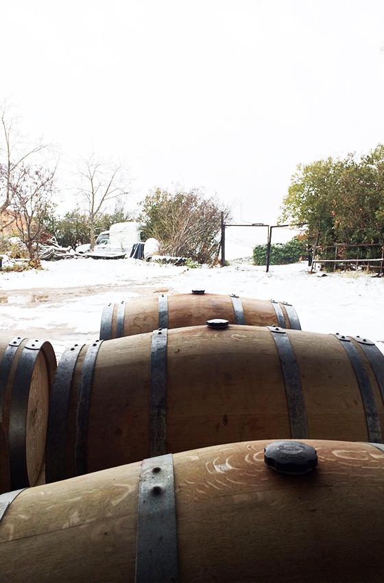 Ojuel Salvaje vino natural DOCa Rioja
